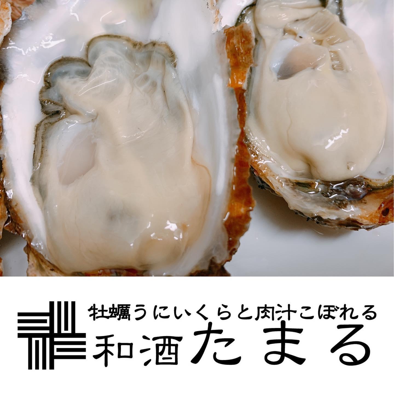 藤沢駅すぐ牡蠣うにいくらと肉汁こぼれる「しあわせがたまる」和酒たまるです!毎月恒例の『まる○ のつく日はたまるの日』がやって参りました!!10日、20日、30日のまるのつく日は、牡蠣ワンゲットワンフリー!!事前のご予約で牡蠣を1個ご注文の際にもう一個ゲットの大チャンス☆☆当日予約もOK!※その他サービス等との併用不可この機会にたまる自慢の牡蠣を是非ご賞味ください♪本日も沢山のおいしいをご用意しております☆ご来店をお待ちしておりま~す♡牡蠣うにいくらと肉汁こぼれる幸せが「たまる」和酒たまるでした☆#湘南 #たまる #和酒 #お刺身 #江戸前寿司 #みやじ豚 #メンチカツ #トンカツ #湘南和牛 #日本酒 #焼酎 #ビール #ウィスキー #ワイン #江ノ島ビール #牡蠣 #カキ #生牡蠣 #生カキ #うに #雲丹 #ウニ #いくら #生しらす #藤沢 #海鮮 #ローストビーフ #肉寿司 #藤沢グルメ #グルメ - from Instagram